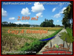 FOR SALE Affordable PROPERTY LAND IN Ubud Pejeng BALI TJUB498