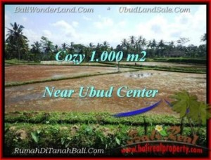 UBUD 1,000 m2 LAND FOR SALE TJUB501