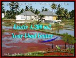 UBUD 4,200 m2 LAND FOR SALE TJUB502