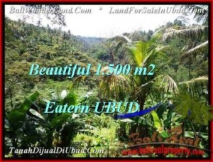 Magnificent PROPERTY LAND FOR SALE IN UBUD TJUB503