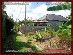 FOR SALE Magnificent LAND IN Canggu Pererenan TJCG145