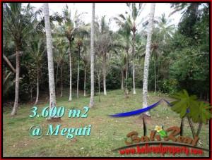 FOR SALE Affordable PROPERTY LAND IN Tabanan Selemadeg BALI TJTB211
