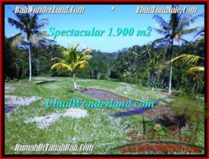 Affordable 1,900 m2 LAND SALE IN UBUD TJUB505