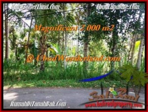FOR SALE Exotic 2,000 m2 LAND IN UBUD TJUB506