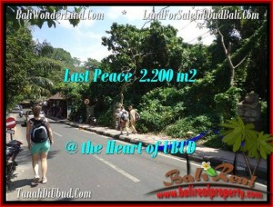 Beautiful 2,200 m2 LAND IN UBUD BALI FOR SALE TJUB509
