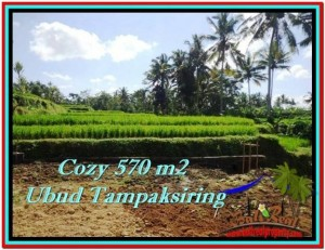 FOR SALE Magnificent PROPERTY 570 m2 LAND IN UBUD BALI TJUB511