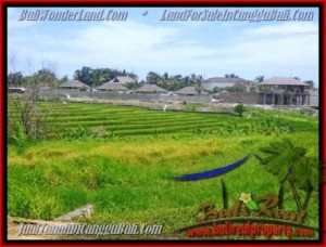 FOR SALE Affordable LAND IN Canggu Cemagi BALI TJCG137
