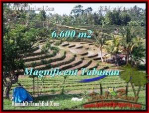 Magnificent PROPERTY 6,600 m2 LAND SALE IN TABANAN BALI TJTB204