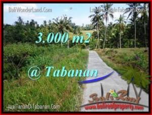 FOR SALE Beautiful PROPERTY 3,000 m2 LAND IN TABANAN BALI TJTB205