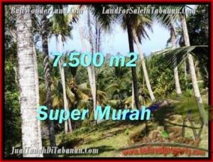 Affordable LAND FOR SALE IN Tabanan Selemadeg BALI TJTB207