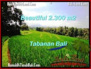 Beautiful LAND SALE IN Tabanan Selemadeg BALI TJTB209