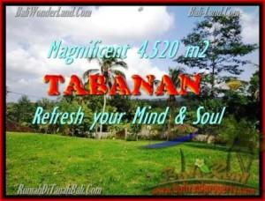 TABANAN 4.520 m2 LAND FOR SALE TJTB154