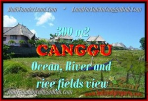 Exotic PROPERTY 980 m2 LAND IN CANGGU BALI FOR SALE TJCG152