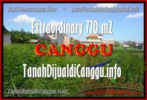 LAND SALE IN Canggu Kerobokan TJCG148