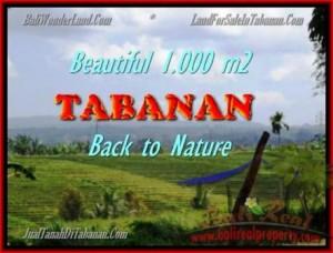 TABANAN 1.000 m2 LAND FOR SALE TJTB155