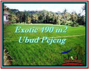 Beautiful PROPERTY 490 m2 LAND FOR SALE IN Ubud Tampak Siring TJUB512