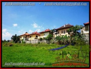 FOR SALE Exotic LAND IN Canggu Pererenan TJCG147