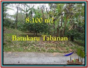 Affordable PROPERTY TABANAN BALI 8.100 m2 LAND FOR SALE TJTB212