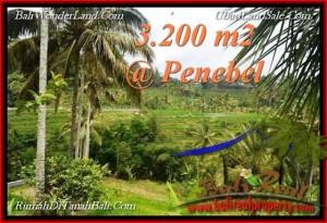 LAND FOR SALE IN Tabanan Jatiluwih BALI TJTB216
