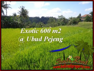 Beautiful PROPERTY 600 m2 LAND FOR SALE IN Ubud Tampak Siring TJUB513