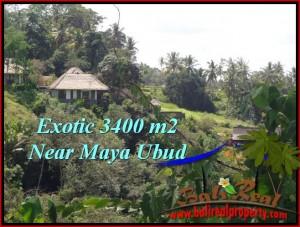 LAND FOR SALE IN Ubud Tengkulak BALI TJUB514