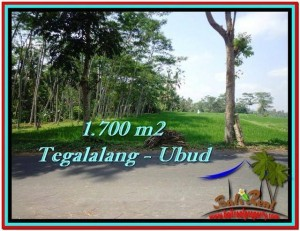 Exotic PROPERTY LAND FOR SALE IN UBUD TJUB518