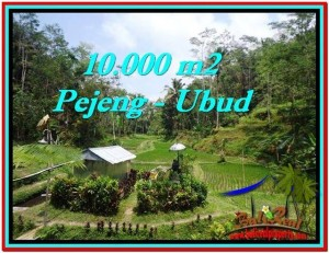 Magnificent PROPERTY LAND IN UBUD FOR SALE TJUB519