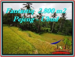 2,800 m2 LAND SALE IN UBUD TJUB521