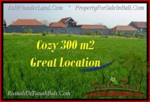 FOR SALE Exotic PROPERTY LAND IN Canggu Brawa TJCG186