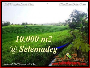 Affordable LAND IN Tabanan Selemadeg BALI FOR SALE TJTB217