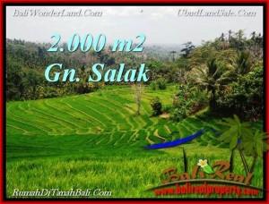 FOR SALE Beautiful LAND IN Tabanan Selemadeg BALI TJTB220