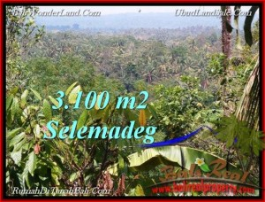 Exotic PROPERTY LAND FOR SALE IN TABANAN TJTB222