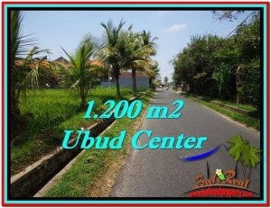 Beautiful UBUD BALI 1,200 m2 LAND FOR SALE TJUB525