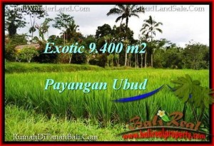 FOR SALE Exotic PROPERTY 9,400 m2 LAND IN UBUD BALI TJUB526