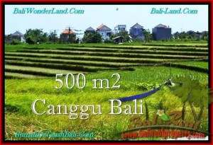 Exotic PROPERTY CANGGU 500 m2 LAND FOR SALE TJCG192