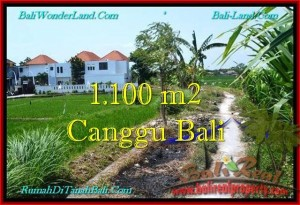 Exotic PROPERTY CANGGU 1,100 m2 LAND FOR SALE TJCG193