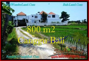 FOR SALE Beautiful PROPERTY 800 m2 LAND IN CANGGU TJCG194