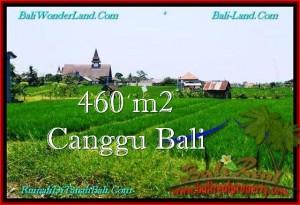 FOR SALE LAND IN CANGGU BALI TJCG195