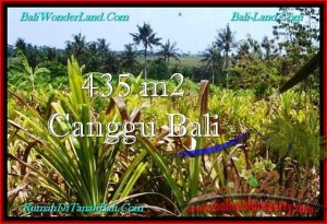 Affordable LAND FOR SALE IN Canggu Pererenan TJCG196