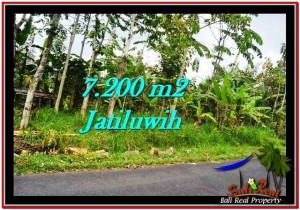 Beautiful PROPERTY 7,200 m2 LAND FOR SALE IN Tabanan Penebel TJTB226