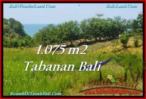 Magnificent LAND SALE IN Tabanan Selemadeg BALI TJTB230