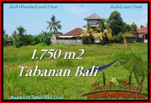FOR SALE Beautiful LAND IN Tabanan Selemadeg BALI TJTB231