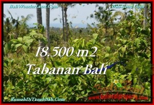 Exotic PROPERTY LAND FOR SALE IN TABANAN TJTB232