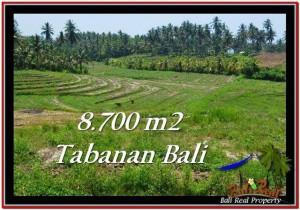 Magnificent PROPERTY LAND IN TABANAN FOR SALE TJTB233