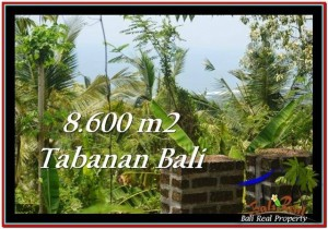 FOR SALE Magnificent PROPERTY 8,600 m2 LAND IN TABANAN BALI TJTB235