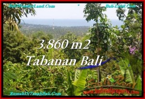 FOR SALE Magnificent PROPERTY 3,860 m2 LAND IN TABANAN BALI TJTB236