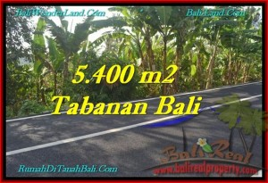 Magnificent 5,400 m2 LAND FOR SALE IN TABANAN BALI TJTB241