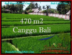 FOR SALE Magnificent PROPERTY LAND IN Canggu Pererenan BALI TJCG187