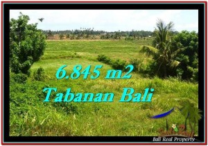 FOR SALE Magnificent PROPERTY 6,845 m2 LAND IN TABANAN BALI TJTB245