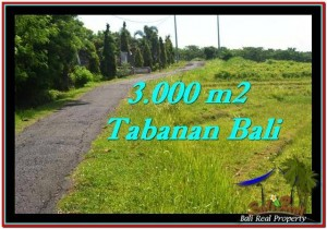 Beautiful PROPERTY 3,000 m2 LAND FOR SALE IN Tabanan Selemadeg TJTB246
